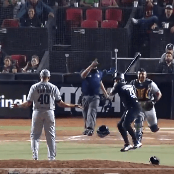 Mexican Baseball League match turns into boxing ring