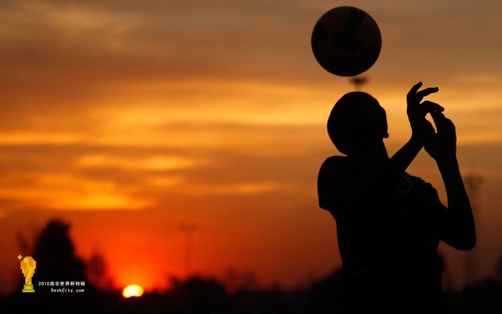 a soccer ball.
