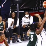 Basketball: Ogwumike and Williams prevented from representing Nigeria