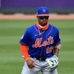 Mets update Francisco Lindor injury status and not very good news