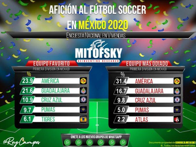 2020 Mitofsky Consultation