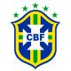 Shield / Flag Brazil