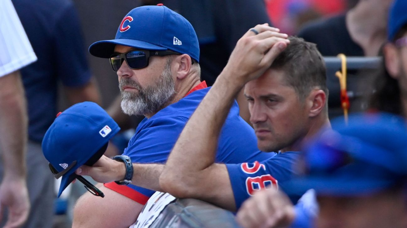 Whats next for the Chicago Cubs after their cleanup on